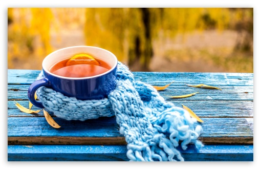 Cup of Tea, Autumn ❤ 4K UHD Wallpaper for Wide 16:10 5:3 Widescreen WHXGA WQXGA WUXGA WXGA WGA ; UltraWide 21:9 ; 4K UHD 16:9 Ultra High Definition 2160p 1440p 1080p 900p 720p ; Standard 4:3 5:4 3:2 Fullscreen UXGA XGA SVGA QSXGA SXGA DVGA HVGA HQVGA ( Apple PowerBook G4 iPhone 4 3G 3GS iPod Touch ) ; Smartphone 16:9 3:2 5:3 2160p 1440p 1080p 900p 720p DVGA HVGA HQVGA ( Apple PowerBook G4 iPhone 4 3G 3GS iPod Touch ) WGA ; Tablet 1:1 ; iPad 1/2/Mini ; Mobile 4:3 5:3 3:2 16:9 5:4 - UXGA XGA SVGA WGA DVGA HVGA HQVGA ( Apple PowerBook G4 iPhone 4 3G 3GS iPod Touch ) 2160p 1440p 1080p 900p 720p QSXGA SXGA ; Dual 16:10 5:3 16:9 4:3 5:4 3:2 WHXGA WQXGA WUXGA WXGA WGA 2160p 1440p 1080p 900p 720p UXGA XGA SVGA QSXGA SXGA DVGA HVGA HQVGA ( Apple PowerBook G4 iPhone 4 3G 3GS iPod Touch ) ;