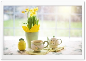 Cup of Tea, Daffodils Flowers, Spring HD Wide Wallpaper for 4K UHD Widescreen desktop & smartphone