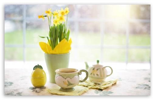 Cup of Tea, Daffodils Flowers, Spring ❤ 4K UHD Wallpaper for Wide 16:10 5:3 Widescreen WHXGA WQXGA WUXGA WXGA WGA ; 4K UHD 16:9 Ultra High Definition 2160p 1440p 1080p 900p 720p ; UHD 16:9 2160p 1440p 1080p 900p 720p ; Standard 4:3 5:4 3:2 Fullscreen UXGA XGA SVGA QSXGA SXGA DVGA HVGA HQVGA ( Apple PowerBook G4 iPhone 4 3G 3GS iPod Touch ) ; Smartphone 3:2 5:3 DVGA HVGA HQVGA ( Apple PowerBook G4 iPhone 4 3G 3GS iPod Touch ) WGA ; Tablet 1:1 ; iPad 1/2/Mini ; Mobile 4:3 5:3 3:2 16:9 5:4 - UXGA XGA SVGA WGA DVGA HVGA HQVGA ( Apple PowerBook G4 iPhone 4 3G 3GS iPod Touch ) 2160p 1440p 1080p 900p 720p QSXGA SXGA ;