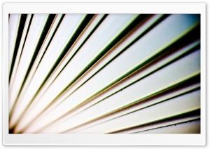 Cut The Slack HD Wide Wallpaper for 4K UHD Widescreen desktop & smartphone