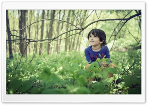 Cute Child Boy, Forest, Springtime HD Wide Wallpaper for 4K UHD Widescreen desktop & smartphone