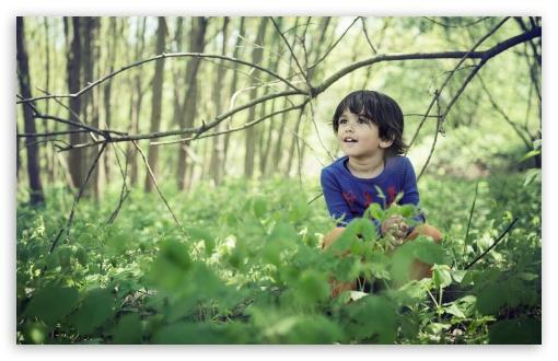 Cute Child Boy Forest Springtime Ultra Hd Desktop Background Wallpaper For 4k Uhd Tv Widescreen Ultrawide Desktop Laptop Multi Display Dual Monitor Tablet Smartphone