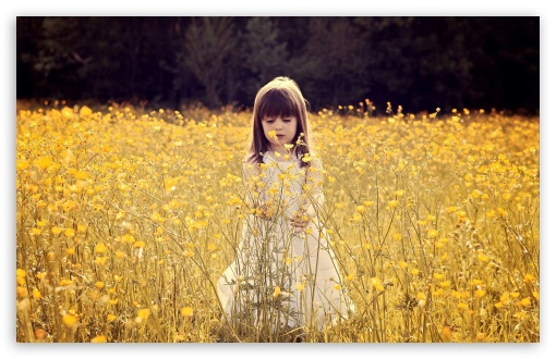 Cute Child In A Flower Field HD wallpaper for Standard 4:3 5:4 Fullscreen UXGA XGA SVGA QSXGA SXGA ; Wide 16:10 5:3 Widescreen WHXGA WQXGA WUXGA WXGA WGA ; HD 16:9 High Definition WQHD QWXGA 1080p 900p 720p QHD nHD ; Other 3:2 DVGA HVGA HQVGA devices ( Apple PowerBook G4 iPhone 4 3G 3GS iPod Touch ) ; Mobile VGA WVGA iPhone iPad PSP Phone - VGA QVGA Smartphone ( PocketPC GPS iPod Zune BlackBerry HTC Samsung LG Nokia Eten Asus ) WVGA WQVGA Smartphone ( HTC Samsung Sony Ericsson LG Vertu MIO ) HVGA Smartphone ( Apple iPhone iPod BlackBerry HTC Samsung Nokia ) Sony PSP Zune HD Zen ; Tablet 2 Android ; Dual 4:3 5:4 16:10 5:3 UXGA XGA SVGA QSXGA SXGA WHXGA WQXGA WUXGA WXGA WGA ;