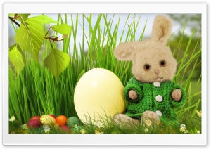 Cute Easter Bunny 2016 HD Wide Wallpaper for Widescreen