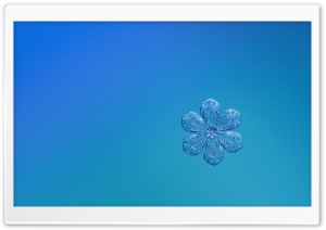 Cute Snowflake HD Wide Wallpaper for Widescreen