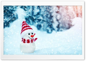 Cute Snowman HD Wide Wallpaper for Widescreen