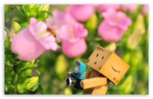 Danbo & Bee HD wallpaper for Wide 16:10 5:3 Widescreen WHXGA WQXGA WUXGA WXGA WGA ; HD 16:9 High Definition WQHD QWXGA 1080p 900p 720p QHD nHD ; Standard 4:3 5:4 3:2 Fullscreen UXGA XGA SVGA QSXGA SXGA DVGA HVGA HQVGA devices ( Apple PowerBook G4 iPhone 4 3G 3GS iPod Touch ) ; Tablet 1:1 ; iPad 1/2/Mini ; Mobile 4:3 5:3 3:2 16:9 5:4 - UXGA XGA SVGA WGA DVGA HVGA HQVGA devices ( Apple PowerBook G4 iPhone 4 3G 3GS iPod Touch ) WQHD QWXGA 1080p 900p 720p QHD nHD QSXGA SXGA ; Dual 4:3 5:4 UXGA XGA SVGA QSXGA SXGA ;