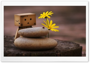 Danbo And Zen Pebbles HD Wide Wallpaper for 4K UHD Widescreen desktop & smartphone