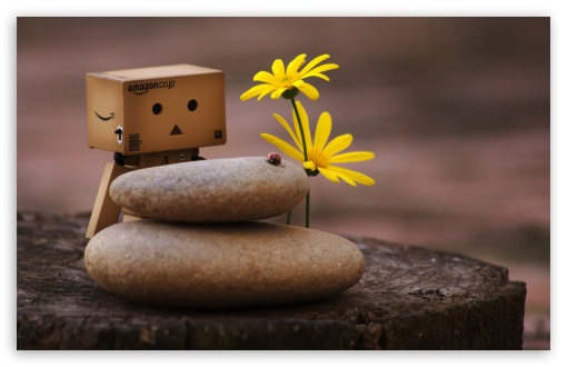 Danbo And Zen Pebbles HD wallpaper for Wide 16:10 5:3 Widescreen WHXGA WQXGA WUXGA WXGA WGA ; HD 16:9 High Definition WQHD QWXGA 1080p 900p 720p QHD nHD ; Standard 4:3 5:4 3:2 Fullscreen UXGA XGA SVGA QSXGA SXGA DVGA HVGA HQVGA devices ( Apple PowerBook G4 iPhone 4 3G 3GS iPod Touch ) ; Tablet 1:1 ; iPad 1/2/Mini ; Mobile 4:3 5:3 3:2 16:9 5:4 - UXGA XGA SVGA WGA DVGA HVGA HQVGA devices ( Apple PowerBook G4 iPhone 4 3G 3GS iPod Touch ) WQHD QWXGA 1080p 900p 720p QHD nHD QSXGA SXGA ;