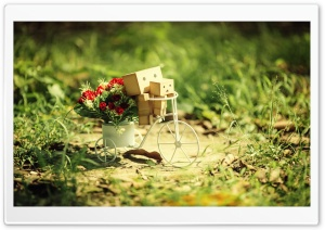 Danbo Baby HD Wide Wallpaper for Widescreen