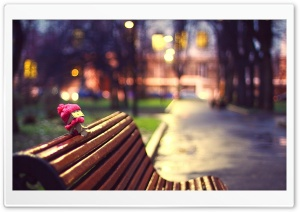 Danbo, Cold Evening HD Wide Wallpaper for Widescreen
