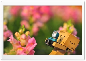 Danbo Falling Down HD Wide Wallpaper for Widescreen
