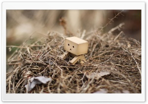 Danbo In A Nest HD Wide Wallpaper for Widescreen