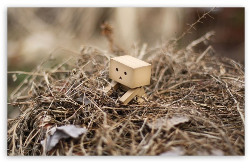 Danbo In A Nest HD wallpaper for Standard 4:3 5:4 Fullscreen UXGA XGA SVGA QSXGA SXGA ; Wide 16:10 5:3 Widescreen WHXGA WQXGA WUXGA WXGA WGA ; HD 16:9 High Definition WQHD QWXGA 1080p 900p 720p QHD nHD ; Other 3:2 DVGA HVGA HQVGA devices ( Apple PowerBook G4 iPhone 4 3G 3GS iPod Touch ) ; Mobile VGA WVGA iPhone iPad PSP Phone - VGA QVGA Smartphone ( PocketPC GPS iPod Zune BlackBerry HTC Samsung LG Nokia Eten Asus ) WVGA WQVGA Smartphone ( HTC Samsung Sony Ericsson LG Vertu MIO ) HVGA Smartphone ( Apple iPhone iPod BlackBerry HTC Samsung Nokia ) Sony PSP Zune HD Zen ; Tablet 2 Android ; Dual 4:3 5:4 16:10 5:3 16:9 UXGA XGA SVGA QSXGA SXGA WHXGA WQXGA WUXGA WXGA WGA WQHD QWXGA 1080p 900p 720p QHD nHD ;