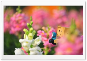 Danbo Lost In The Flower Sea... HD Wide Wallpaper for 4K UHD Widescreen desktop & smartphone