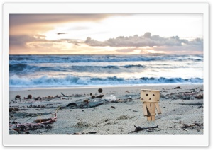 Danbo On The Beach HD Wide Wallpaper for Widescreen