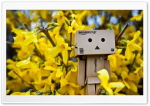 Danbo Spring Time HD Wide Wallpaper for Widescreen