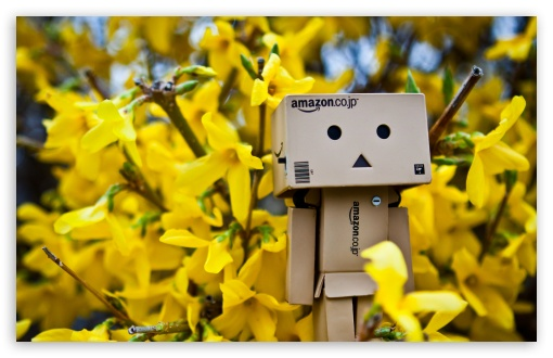 Danbo Spring Time HD wallpaper for Wide 16:10 5:3 Widescreen WHXGA WQXGA WUXGA WXGA WGA ; HD 16:9 High Definition WQHD QWXGA 1080p 900p 720p QHD nHD ; UHD 16:9 WQHD QWXGA 1080p 900p 720p QHD nHD ; Standard 4:3 5:4 3:2 Fullscreen UXGA XGA SVGA QSXGA SXGA DVGA HVGA HQVGA devices ( Apple PowerBook G4 iPhone 4 3G 3GS iPod Touch ) ; Tablet 1:1 ; iPad 1/2/Mini ; Mobile 4:3 5:3 3:2 16:9 5:4 - UXGA XGA SVGA WGA DVGA HVGA HQVGA devices ( Apple PowerBook G4 iPhone 4 3G 3GS iPod Touch ) WQHD QWXGA 1080p 900p 720p QHD nHD QSXGA SXGA ;
