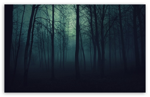 Dark Forest ❤ 4K UHD Wallpaper for Wide 16:10 5:3 Widescreen WHXGA WQXGA WUXGA WXGA WGA ; 4K UHD 16:9 Ultra High Definition 2160p 1440p 1080p 900p 720p ; Standard 4:3 5:4 3:2 Fullscreen UXGA XGA SVGA QSXGA SXGA DVGA HVGA HQVGA ( Apple PowerBook G4 iPhone 4 3G 3GS iPod Touch ) ; Tablet 1:1 ; iPad 1/2/Mini ; Mobile 4:3 5:3 3:2 16:9 5:4 - UXGA XGA SVGA WGA DVGA HVGA HQVGA ( Apple PowerBook G4 iPhone 4 3G 3GS iPod Touch ) 2160p 1440p 1080p 900p 720p QSXGA SXGA ;
