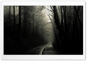 Dark Road Forest HD Wide Wallpaper for Widescreen