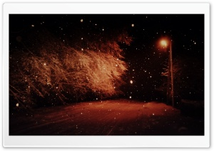 Dark Winter Night HD Wide Wallpaper for Widescreen