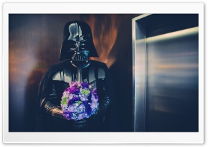 Darth Vader Wedding Ultra HD Wallpaper for 4K UHD Widescreen desktop, tablet & smartphone