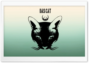Das Cat Ultra HD Wallpaper for 4K UHD Widescreen desktop, tablet & smartphone
