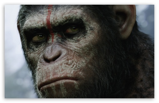 Dawn of the Planet of the Apes HD desktop wallpaper