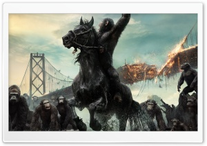 Dawn of the Planet of the Apes 2014 Film HD Wide Wallpaper for Widescreen