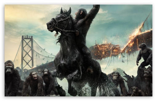 Dawn of the Planet of the Apes 2014 Film HD wallpaper for Wide 16:10 5:3 Widescreen WHXGA WQXGA WUXGA WXGA WGA ; HD 16:9 High Definition WQHD QWXGA 1080p 900p 720p QHD nHD ; Standard 4:3 5:4 3:2 Fullscreen UXGA XGA SVGA QSXGA SXGA DVGA HVGA HQVGA devices ( Apple PowerBook G4 iPhone 4 3G 3GS iPod Touch ) ; Smartphone 5:3 WGA ; Tablet 1:1 ; iPad 1/2/Mini ; Mobile 4:3 5:3 3:2 16:9 5:4 - UXGA XGA SVGA WGA DVGA HVGA HQVGA devices ( Apple PowerBook G4 iPhone 4 3G 3GS iPod Touch ) WQHD QWXGA 1080p 900p 720p QHD nHD QSXGA SXGA ;