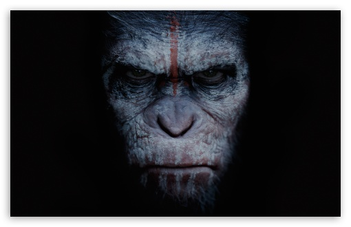 Dawn Of The Planet Of The Apes 2014 Movie 4K HD Desktop