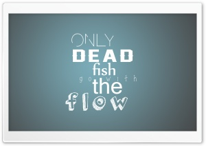 dead fish Ultra HD Wallpaper for 4K UHD Widescreen desktop, tablet & smartphone