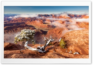 Dead Horse Point State Park after snowfall, Utah HD Wide Wallpaper for Widescreen
