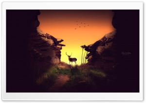 Deer in the Sunset HD Wide Wallpaper for 4K UHD Widescreen desktop & smartphone