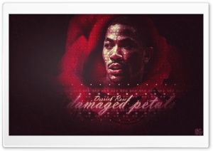 Derrick Rose-Damaged Petals HD Wide Wallpaper for Widescreen