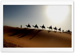 Desert Caravan HD Wide Wallpaper for Widescreen