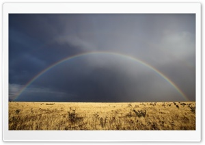 Desert Rainbow HD Wide Wallpaper for Widescreen