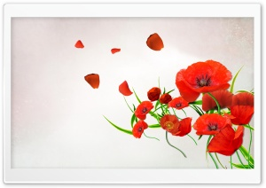 Desktop Poppies HD Wide Wallpaper for Widescreen