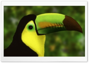 Digital Bird HD Wide Wallpaper for Widescreen
