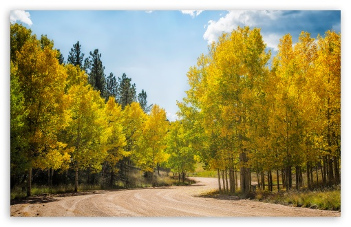 Dirt Road Aspens ❤ 4K UHD Wallpaper for Wide 16:10 5:3 Widescreen WHXGA WQXGA WUXGA WXGA WGA ; UltraWide 21:9 24:10 ; 4K UHD 16:9 Ultra High Definition 2160p 1440p 1080p 900p 720p ; UHD 16:9 2160p 1440p 1080p 900p 720p ; Standard 4:3 5:4 3:2 Fullscreen UXGA XGA SVGA QSXGA SXGA DVGA HVGA HQVGA ( Apple PowerBook G4 iPhone 4 3G 3GS iPod Touch ) ; Smartphone 16:9 3:2 5:3 2160p 1440p 1080p 900p 720p DVGA HVGA HQVGA ( Apple PowerBook G4 iPhone 4 3G 3GS iPod Touch ) WGA ; Tablet 1:1 ; iPad 1/2/Mini ; Mobile 4:3 5:3 3:2 16:9 5:4 - UXGA XGA SVGA WGA DVGA HVGA HQVGA ( Apple PowerBook G4 iPhone 4 3G 3GS iPod Touch ) 2160p 1440p 1080p 900p 720p QSXGA SXGA ; Dual 16:10 5:3 16:9 4:3 5:4 3:2 WHXGA WQXGA WUXGA WXGA WGA 2160p 1440p 1080p 900p 720p UXGA XGA SVGA QSXGA SXGA DVGA HVGA HQVGA ( Apple PowerBook G4 iPhone 4 3G 3GS iPod Touch ) ;