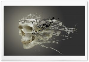 Disintegrating Skull HD Wide Wallpaper for Widescreen