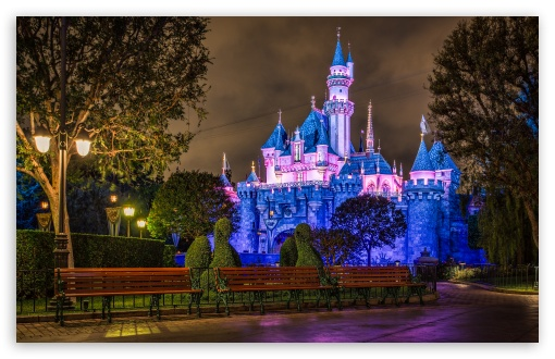 Disneyland Sleeping Beauty Castle HD wallpaper for Wide 16:10 5:3 Widescreen WHXGA WQXGA WUXGA WXGA WGA ; HD 16:9 High Definition WQHD QWXGA 1080p 900p 720p QHD nHD ; UHD 16:9 WQHD QWXGA 1080p 900p 720p QHD nHD ; Standard 4:3 5:4 3:2 Fullscreen UXGA XGA SVGA QSXGA SXGA DVGA HVGA HQVGA devices ( Apple PowerBook G4 iPhone 4 3G 3GS iPod Touch ) ; Tablet 1:1 ; iPad 1/2/Mini ; Mobile 4:3 5:3 3:2 5:4 - UXGA XGA SVGA WGA DVGA HVGA HQVGA devices ( Apple PowerBook G4 iPhone 4 3G 3GS iPod Touch ) QSXGA SXGA ;