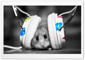 Dj Mouse HD Wide Wallpaper for Widescreen