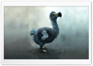 Dodo HD Wide Wallpaper for Widescreen
