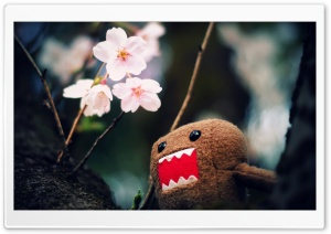 Domo Kun And Tree Blossoms HD Wide Wallpaper for 4K UHD Widescreen desktop & smartphone