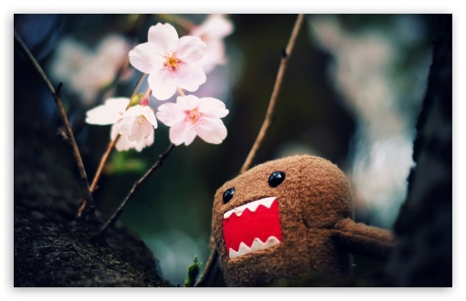 Domo Kun And Tree Blossoms HD wallpaper for Standard 4:3 5:4 Fullscreen UXGA XGA SVGA QSXGA SXGA ; Wide 16:10 5:3 Widescreen WHXGA WQXGA WUXGA WXGA WGA ; HD 16:9 High Definition WQHD QWXGA 1080p 900p 720p QHD nHD ; Other 3:2 DVGA HVGA HQVGA devices ( Apple PowerBook G4 iPhone 4 3G 3GS iPod Touch ) ; Mobile VGA WVGA iPhone iPad PSP Phone - VGA QVGA Smartphone ( PocketPC GPS iPod Zune BlackBerry HTC Samsung LG Nokia Eten Asus ) WVGA WQVGA Smartphone ( HTC Samsung Sony Ericsson LG Vertu MIO ) HVGA Smartphone ( Apple iPhone iPod BlackBerry HTC Samsung Nokia ) Sony PSP Zune HD Zen ; Tablet 2 Android ; Dual 5:4 QSXGA SXGA ;