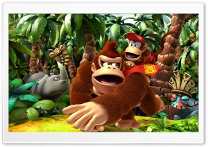 Donkey Kong Returns HD Wide Wallpaper for 4K UHD Widescreen desktop & smartphone