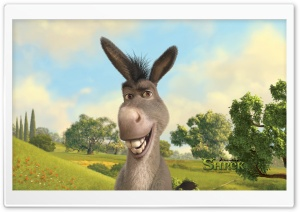 Donkey, Shrek The Final Chapter HD Wide Wallpaper for Widescreen