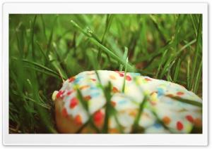 Donut In The Grass HD Wide Wallpaper for 4K UHD Widescreen desktop & smartphone