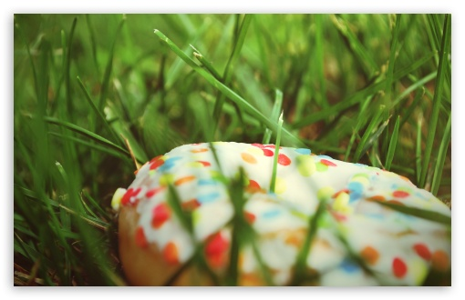 Donut In The Grass HD wallpaper for Wide 16:10 5:3 Widescreen WHXGA WQXGA WUXGA WXGA WGA ; HD 16:9 High Definition WQHD QWXGA 1080p 900p 720p QHD nHD ; Standard 4:3 5:4 3:2 Fullscreen UXGA XGA SVGA QSXGA SXGA DVGA HVGA HQVGA devices ( Apple PowerBook G4 iPhone 4 3G 3GS iPod Touch ) ; Tablet 1:1 ; iPad 1/2/Mini ; Mobile 4:3 5:3 3:2 16:9 5:4 - UXGA XGA SVGA WGA DVGA HVGA HQVGA devices ( Apple PowerBook G4 iPhone 4 3G 3GS iPod Touch ) WQHD QWXGA 1080p 900p 720p QHD nHD QSXGA SXGA ; Dual 16:10 4:3 5:4 WHXGA WQXGA WUXGA WXGA UXGA XGA SVGA QSXGA SXGA ;